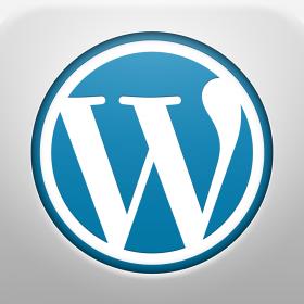 Como optimizar las categorías de WordPress