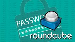 Cómo escoger con seguridad y cambiar la contraseña del correo electrónico en la aplicación Roundcube