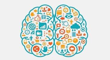 neuromarketing en tu tienda online-xenonfactory-min