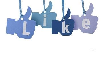 social media web corporativa-xenonfactory-min