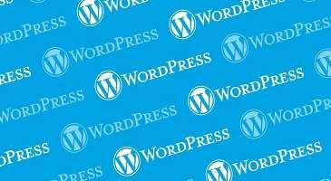 páginas web en wordpress en el mundo 1- xenonfactory-compressed