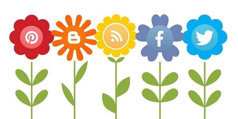 presupuesto campaña de social media 2-xenonfactory-compressed