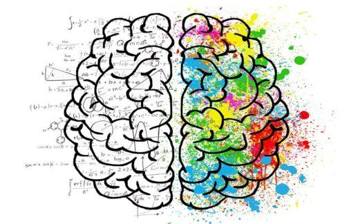 creatvidad tu tienda virtual - xenonfactory