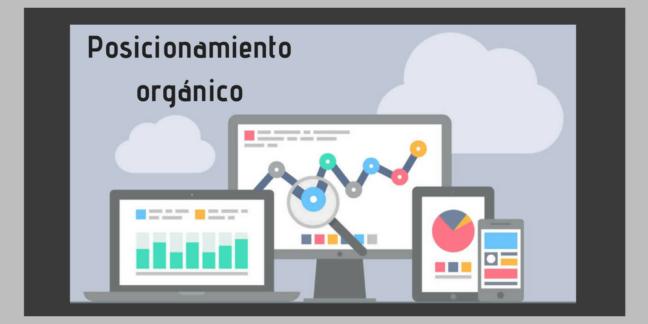 web-negocio-pc-posicionamiento-organico-xenonfactory.es