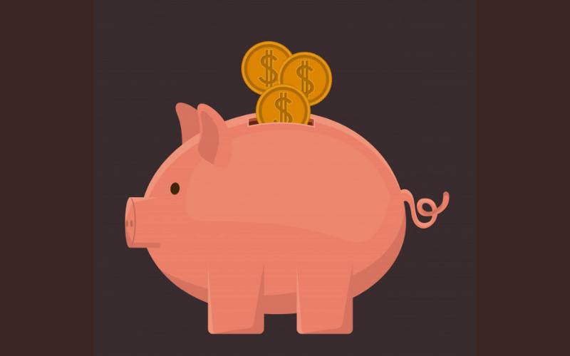 cerdo-monedas-ahorro-dinero-costes-outsourcing-de-servicios-web-xenonfactory.es