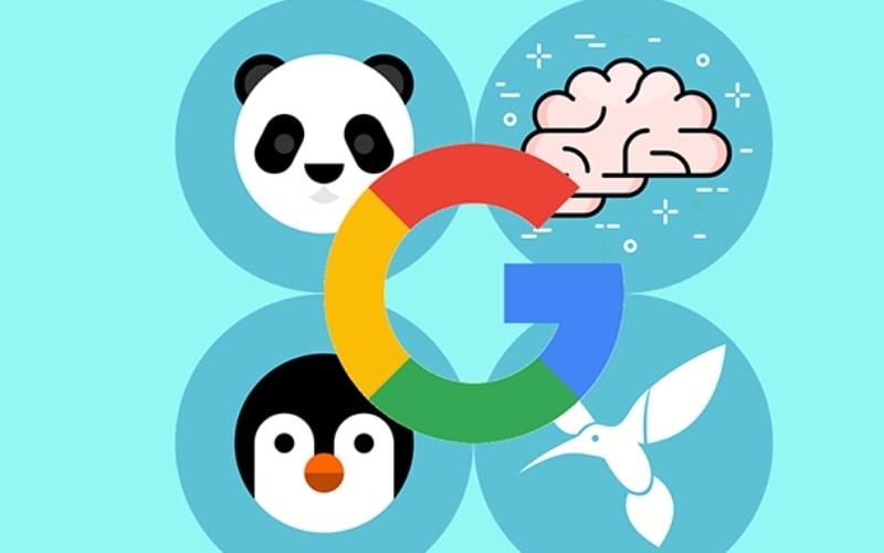 Google-posicionamiento-web-xenonfactory.es