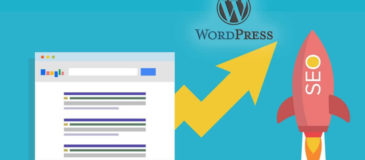 SEO-para-WordPress-optimización-xenonfactory.es
