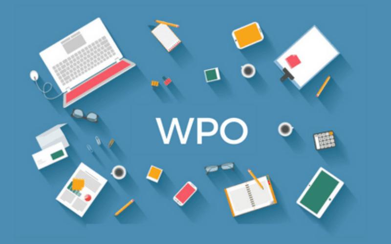WPO-posicionamiento-web-SEO-xenonfactory.es